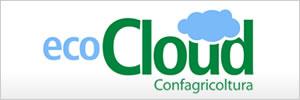 Eco Cloud