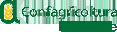 copy-logo_piemonte