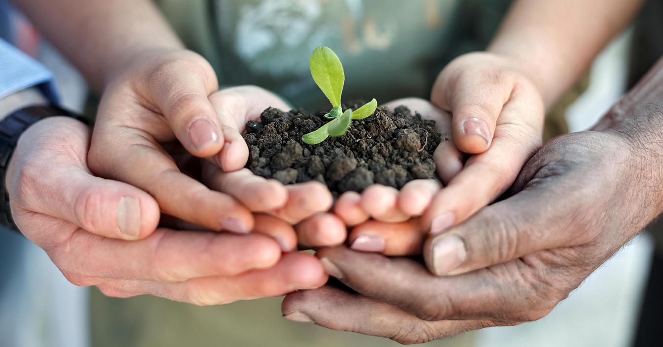 agricoltura sociale