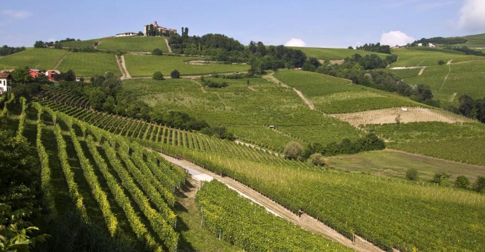 Regione Piemonte: un manuale su vigilanza e controlli negli agriturismi