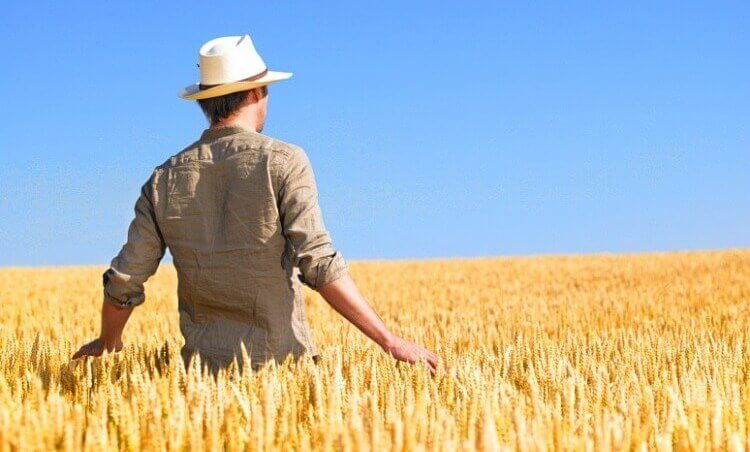 Giovane agricoltore