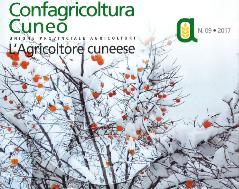 09 AGR_CUNEESE_dicembre-2017_WEB