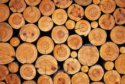 legname, legno