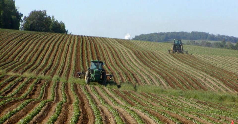 Complicazioni burocratiche in arrivo per agricoltori e contoterzisti