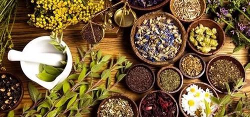 piante officinali e aromatiche