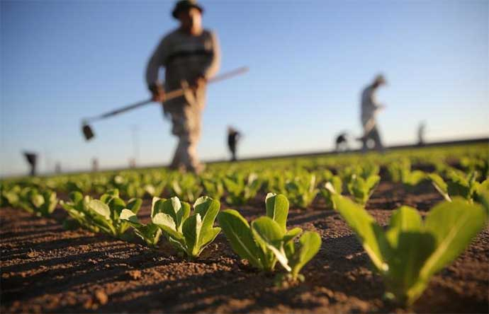 agricoltura-3
