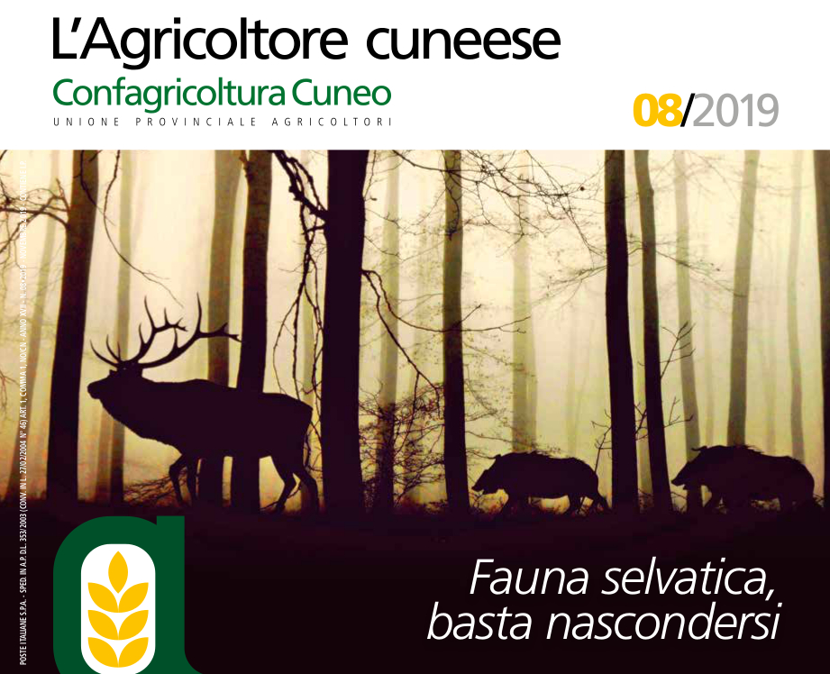Copertina_Agricoltore_Cuneese_novembre 2019