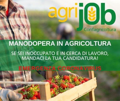 Banner Agrijob