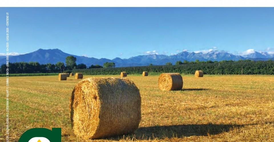 È online l'Agricoltore Cuneese di luglio 2020. Sfoglialo qui