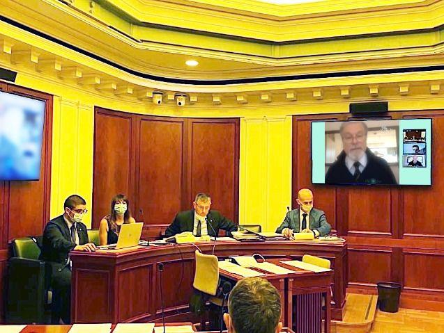 apicoltura in commissione al senato