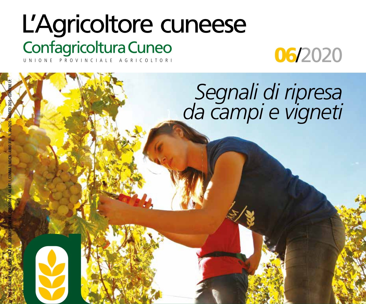 agosto l'agricoltore cuneese