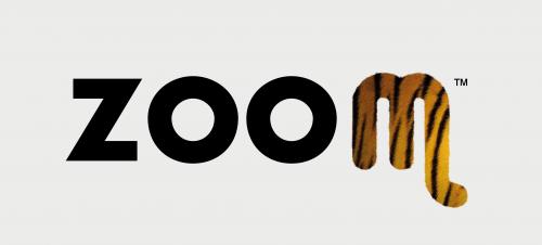 Es_ZOOM logo