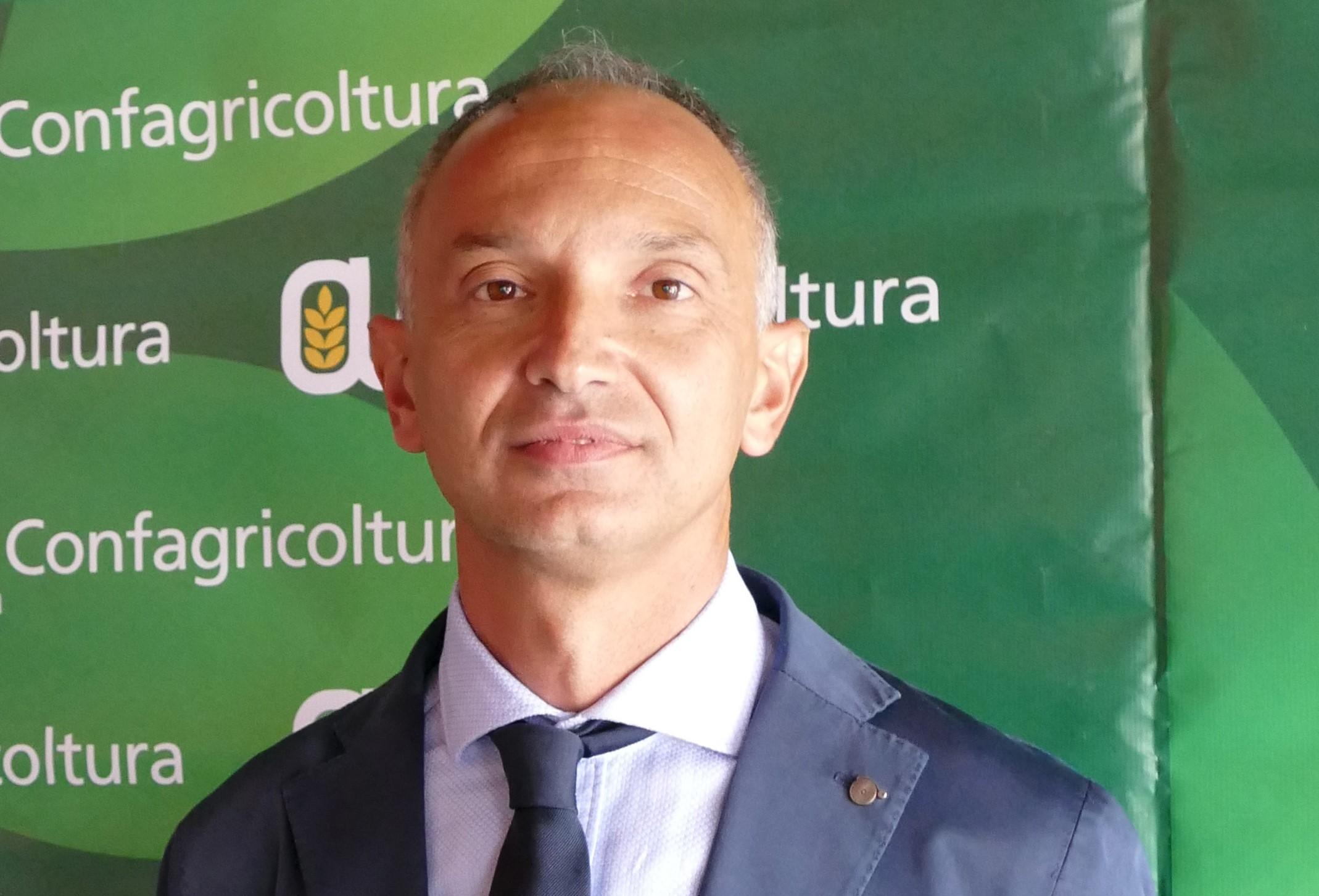Enrico Allasia