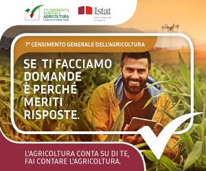 ISTAT_7_CENSIMENTO_AGRICOLTURA_BANNER_300x250