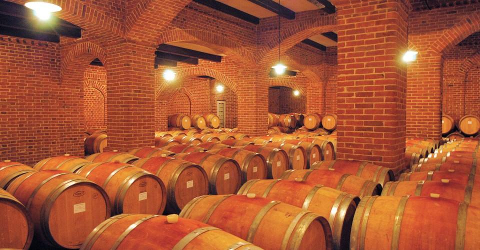 """Confagricoltura Cuneo: """"Alle aziende del vino servono sostegni rimodulati e tempestivi"""""""