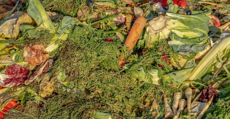 La definizione di rifiuto urbano penalizza le aziende agricole, Confagricoltura scrive ai Comuni della provincia di Cuneo