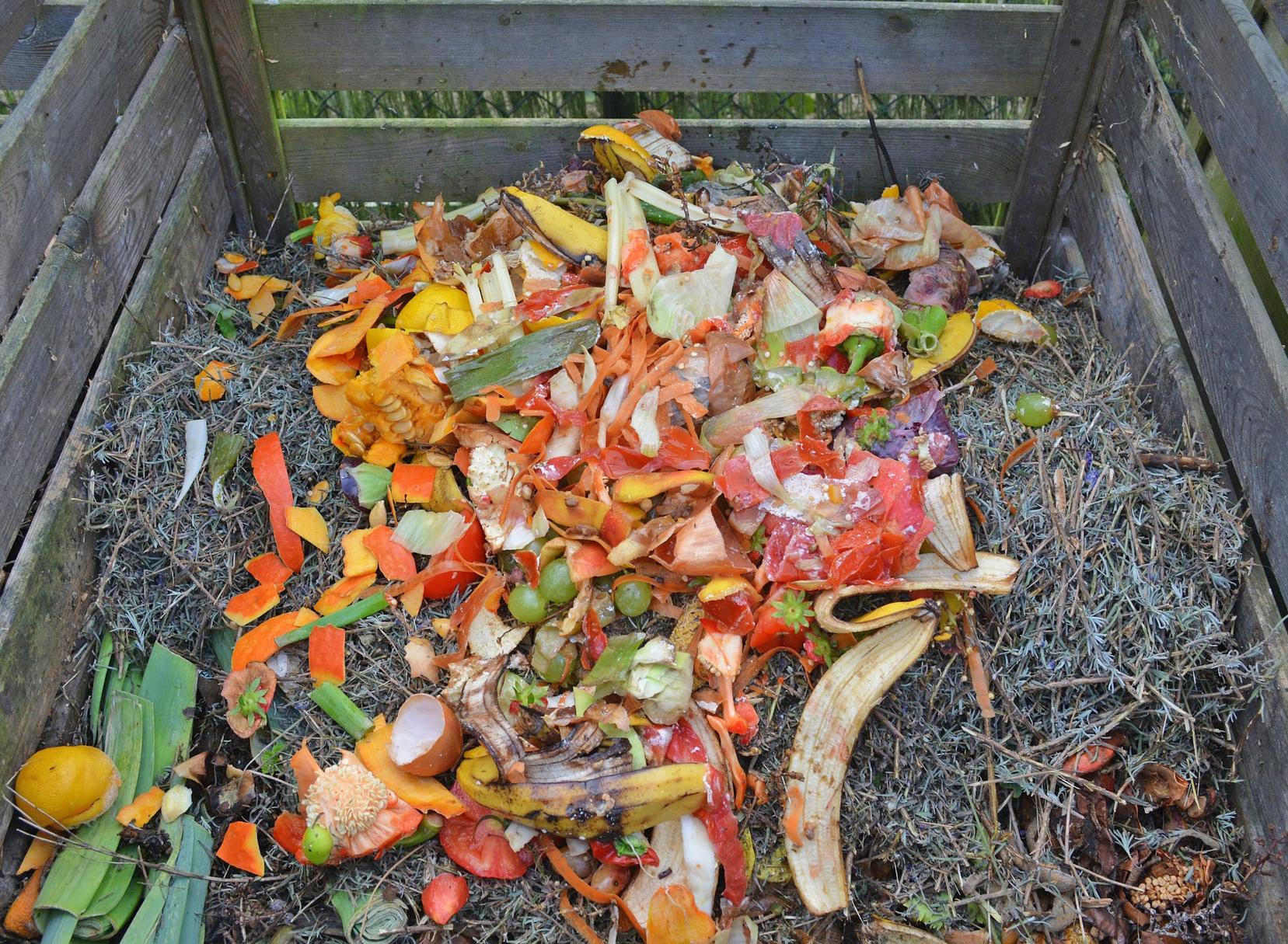Compost_rifiuti_organici